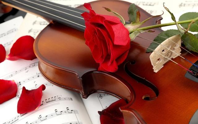 red_rose_guitar