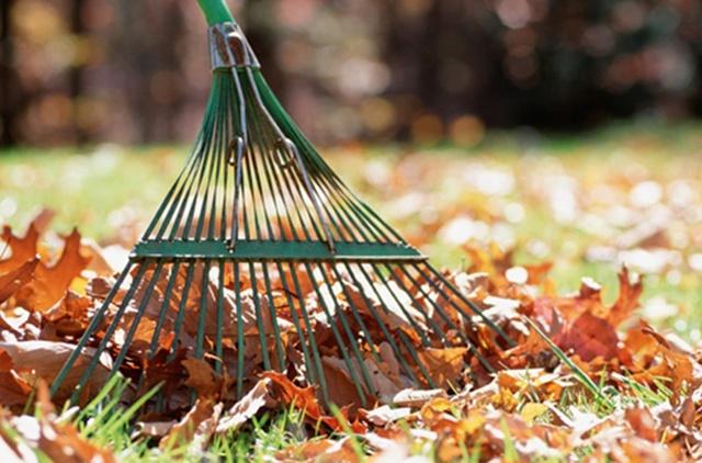A1-limpiar-el-jardin